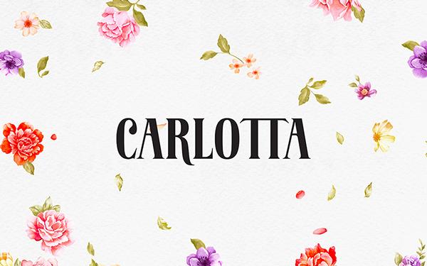 卡洛塔烘焙策划  未命名  第4张