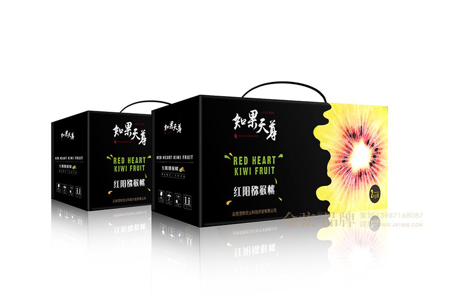 水果包装设计 昆明金弦水果包装案例 包装设计 未命名  第5张
