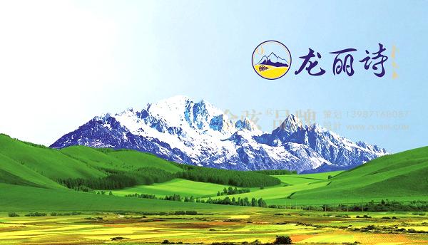 昆明logo设计-金弦案例龙丽诗