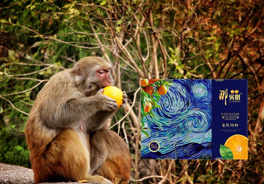 那实橙冰糖橙包装设计 昆明特产包装设计 水果包装设计 包装设计  第3张