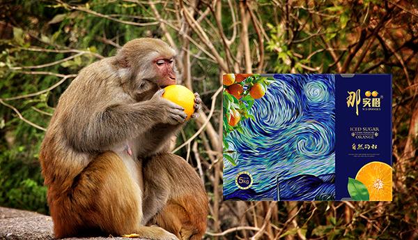 昆明橙子包装设计-金弦案例那实橙