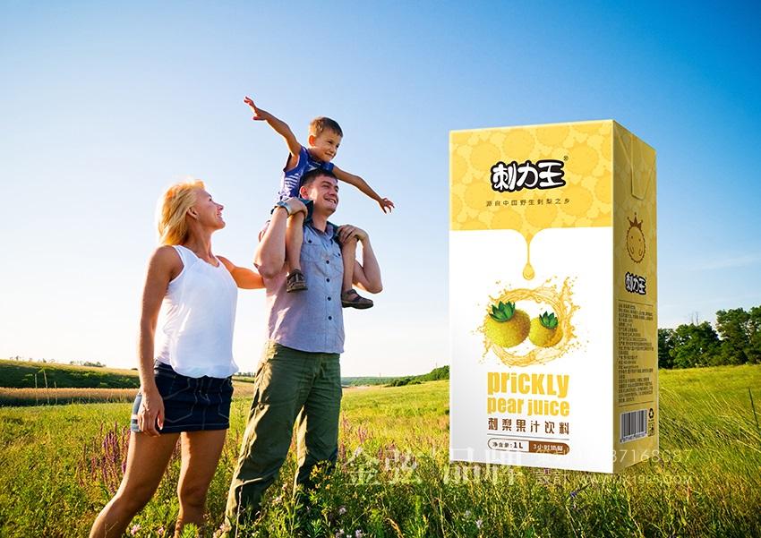 刺力王果汁包装设计 饮料包装设计 饮料logo设计 饮料电商设计 包装设计  第2张