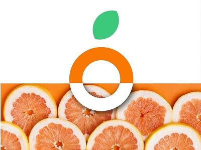 云南玉溪浮橙vi设计-水果vi设计